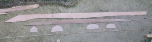 IMGP1537